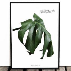 Botaniczny plakat URBAN...