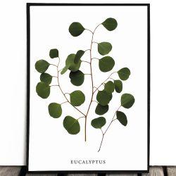 Botaniczny plakat...